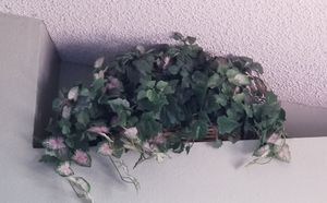 Large Faux/Fake Decorative Plant 2' Long for Sale in Mesa, AZ