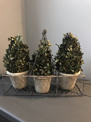 3 decorative plants in basket for Sale in Fort Washington, MD