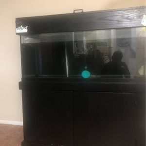 75 gallon fish tank for Sale in New Port Richey, FL