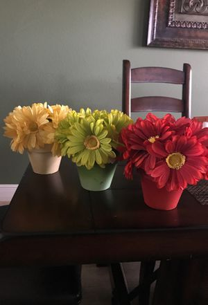 Fall flower pots for Sale in Clermont, FL