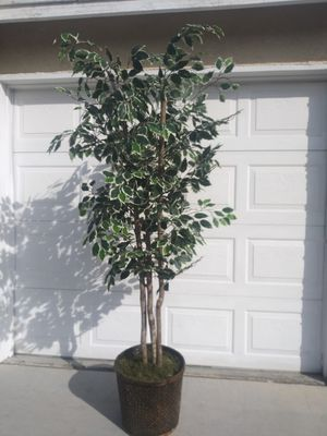 7.5 Foot Fake Tree/Plant for Sale in Las Vegas, NV