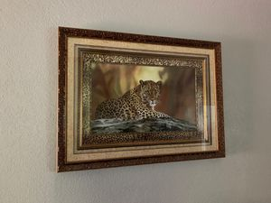 Cheetah frame for Sale in San Antonio, TX