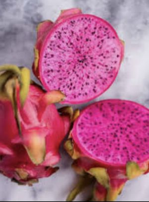 Organic Potted & Rooted Hybrid Dragonfruit for Sale in Newark, CA
