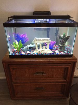 20 gal fish tank for Sale in Houston, TX