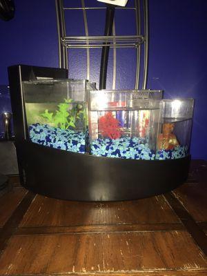 Aqueon Betta Falls Aquarium (Black) for Sale in Greenville, SC