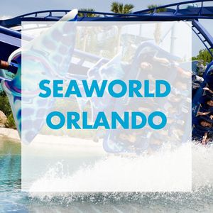 3 tickets for sea world, aquatica or bush garden and free parking for Sale in Belle Isle, FL