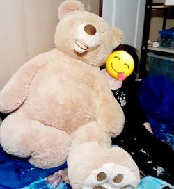 Giant teddy Bear for Sale in Louisville,  KY