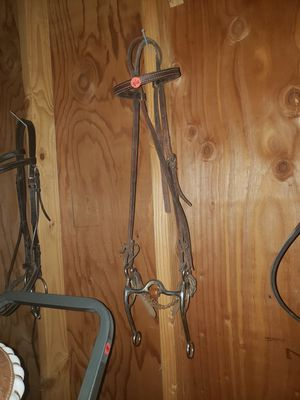 Lots of bridles for Sale in Tumwater, WA