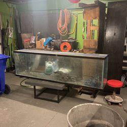 Giant Fish Tank for Sale in San Bernardino,  CA