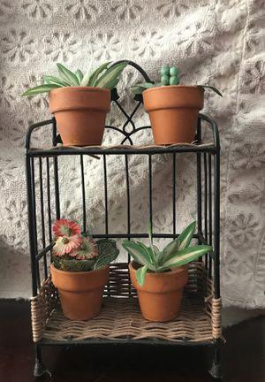 Mini Plant Stand for Sale in Hermosa Beach, CA