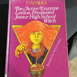 Cool 70s Book for Sale in Appleton, WI