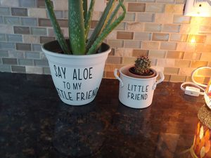Decals for plant pots for Sale in Swansboro, NC