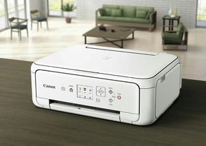 Brand New WHITE Canon PIXMA TS5120 Wireless All-in-One Color Inkjet Printer for Sale in Detroit, MI
