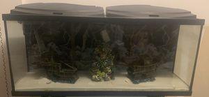 75 Gallon fish Tank. for Sale in North Las Vegas, NV