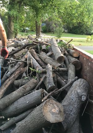 Free fire woods for Sale in Indianapolis, IN