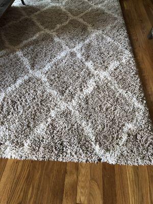 Beige/ivory shag rug for Sale in Lexington, KY