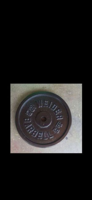 Single Iron Plate (25lbs) Weight for Sale in Sacramento, CA