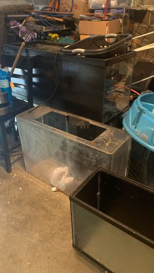 Fish tanks for Sale in Mount Healthy, OH