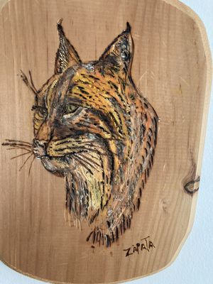Wild cat burning wood free had for Sale in Douglasville, GA