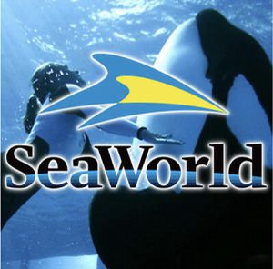 SeaWorld Tickets for Sale $35 each- MEET AT SEAWORLD- PAY INSIDE THE PARK! Guaranteed Tickets!!! for Sale in San Diego, CA