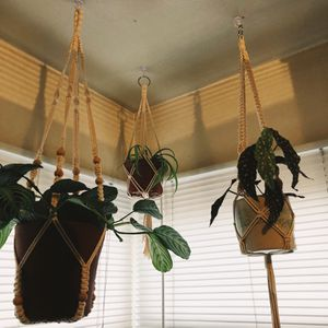 Macrame Plant Holders for Sale in San Diego, CA