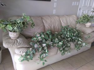 Fake plant decor for Sale in Tampa, FL