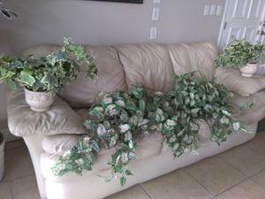 Fake plant decor for Sale in Tampa, FL