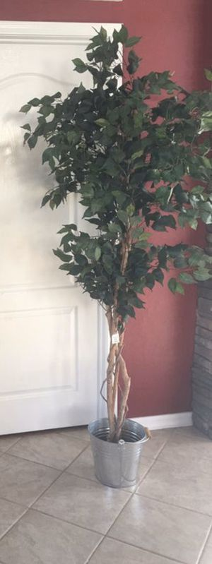 Artificial tree brand new / silk tree in rustic bucket / fake ficus / office plant / 6ft tall for Sale in Glendale, AZ