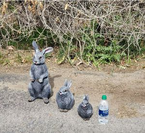 Dont delete statues not real- easter rabbits pottery macetas for Sale in Perris, CA