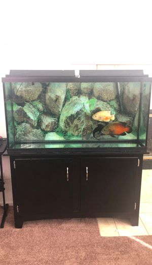 FULL FUNCTIONAL 60 GAL FISH TANK WITH STAND for Sale in Fontana, CA