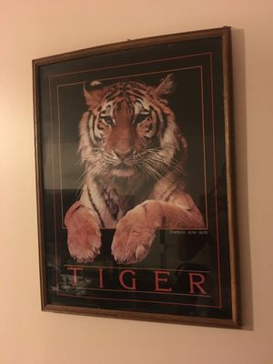 Tiger wall poster for Sale in Waukegan, IL
