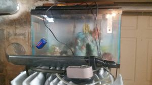 Small aquarium with all the fixings and two year supply of filters. for Sale in Saint Clair Shores, MI