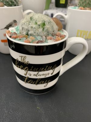Personalized (sanctuary) gifts with succulents (gifts for all occasions and all ages) for Sale in Renton, WA