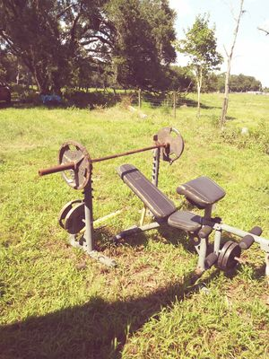 Olympic weight set..including squat and curl bar...over 400 lbs for Sale in Plant City, FL