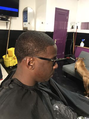 Substantial cutz for Sale in Baltimore, MD