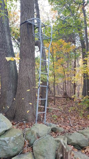 Tree stand for Sale in Cumberland, RI