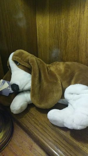 Stuffed animal for Sale in Arvada, CO