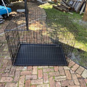 XL Dog Crate Great Condition - PAN9DF for Sale in Boca Raton, FL