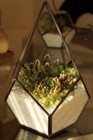 Large Geometric Succulent Terrarium for Sale in Anaheim, CA