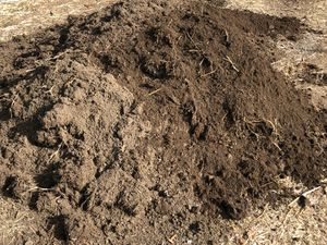 FREE CLEAN AND HEALTHY SOIL FOR GARDEN for Sale in Baldwin Park, CA