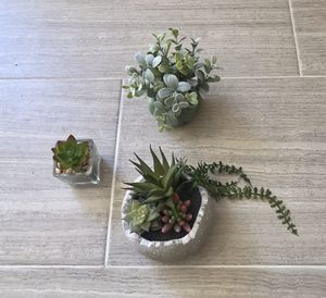 Faux Succulents - small for Sale in San Diego, CA