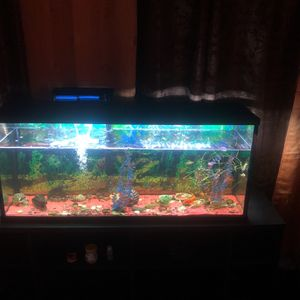 Fish Tank New Comes With Everything In Picture for Sale in Houston, TX