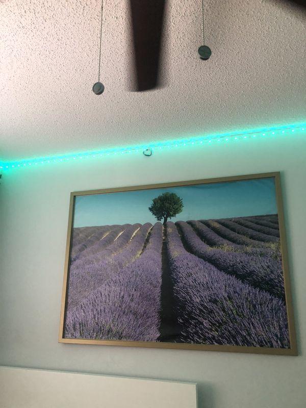 IKEA lavender field framed image