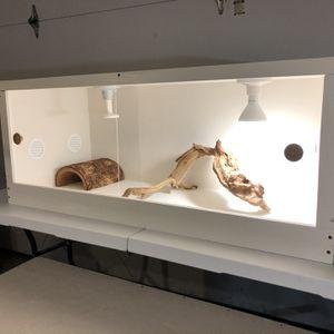 Reptile Enclosure for Sale in Garland, TX