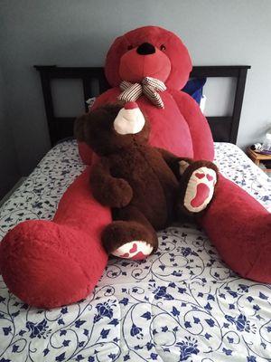 Bear for Sale in Walpole, MA