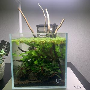 Uns 16c 1 Gallon Fish Tank for Sale in Clarksburg, CA