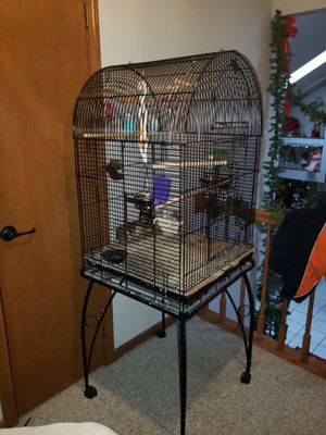 Huge Parrot Birdcage and rolling stand with 2 Parakeets for Sale in Palos Heights, IL