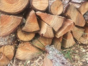 3 cords of seasoned fire wood for Sale in Puyallup, WA