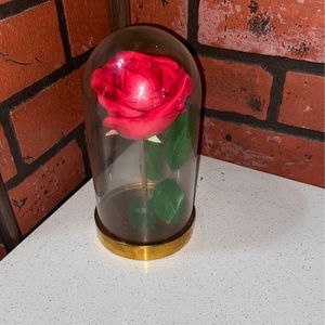 Beauty and the Beast Forever Rose for Sale in Chicago, IL