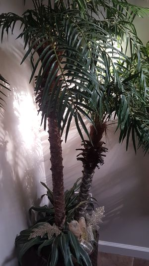 Artificial tree for Sale in Los Angeles, CA